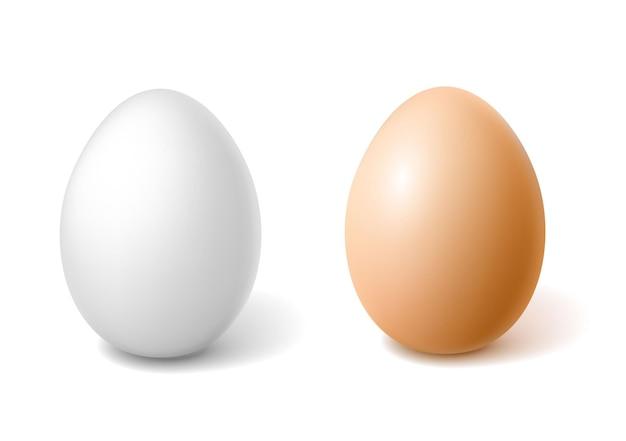 Oeufs de poule 3d réalistes vectro avec symbole de pâques en coquille d'oeuf blanc marron