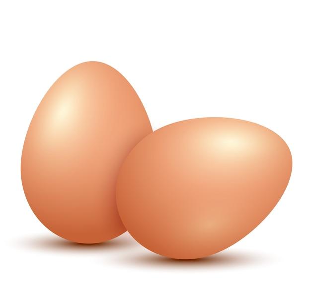 Oeufs de poulet sur fond blanc