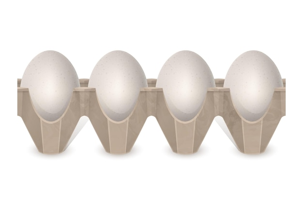 Oeufs de poulet réalistes dans une boîte à œufs en carton isolé