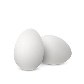 Oeufs réalistes blancs de vecteur. deux œufs de poule isolés avec des ombres douces sur fond blanc. illustration 3d