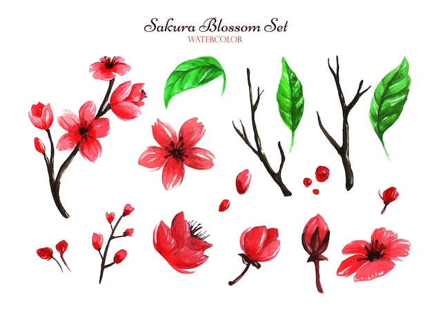 Oeuvre d'aquarelle d'une collection de plusieurs ensembles inspirants de fleurs de cerisier qui peuvent aider à devenir créatif dans votre oeuvre.