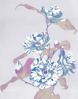 Oeuvre d'art vintage à effet négatif de camélias rayés, remix de la photographie originale.