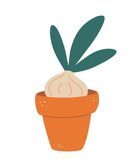 Oignon dans une casserole. pousse d'une jeune plante. cultiver des oignons verts à la maison. stades de croissance des plantes. cultiver des oignons verts en pot. illustration vectorielle plane.
