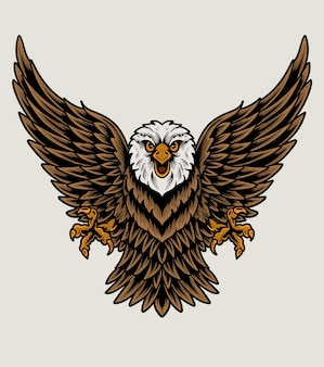 Oiseau aigle illustration sur fond blanc
