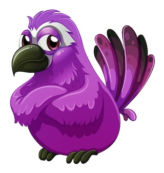 Un oiseau à l'air fâché