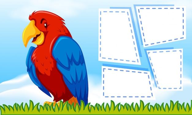 Oiseau avec un cadre