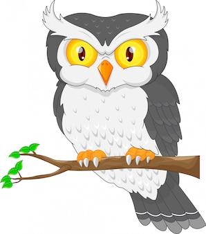 Oiseau chouette dessin animé posant sur l'arbre