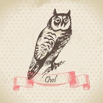 Oiseau chouette, illustration dessinée à la main