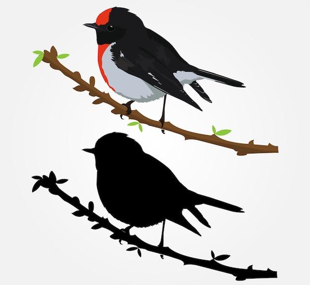 Oiseau magnifique vecteur dessiné à la main illustration