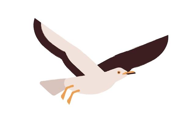 Oiseau de mer de l'atlantique de dessin animé volant isolé sur fond blanc. illustration plate de vecteur de mouette mignon coloré. bel oiseau marin appréciant la liberté. adorable créature ailée. mouette sauvage colorée.