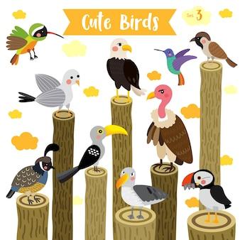 Oiseau mignon dessin animé animal