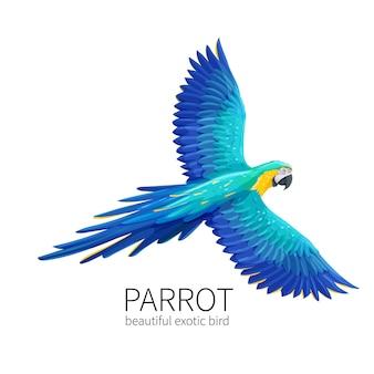 Oiseau perroquet