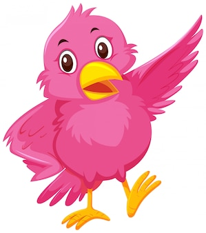 Un oiseau rose mignon