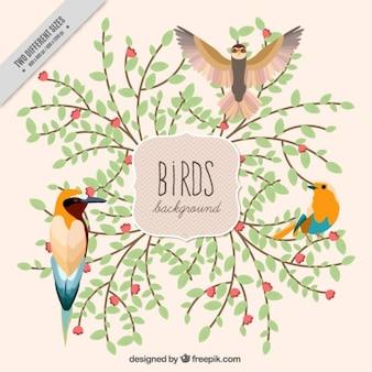 Oiseaux d'aquarelle avec des branches de fond