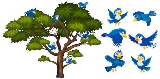 Oiseaux bleus volant autour du grand arbre vert