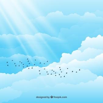 Oiseaux dans le ciel nuageux