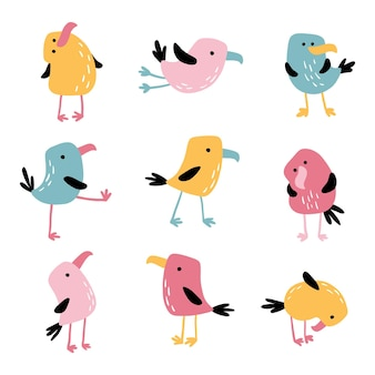 Oiseaux drôles tropicaux.