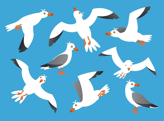 Oiseaux de mer, fond de ciel de dessin animé de mouette