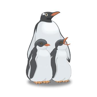 Oiseaux de pingouins
