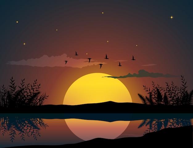 Oiseaux volants au-dessus du coucher du soleil