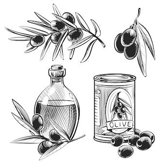 Olives et bouteilles d'huile d'olive dessinés à la main