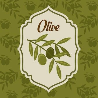 Olives design sur illustration vectorielle fond vert