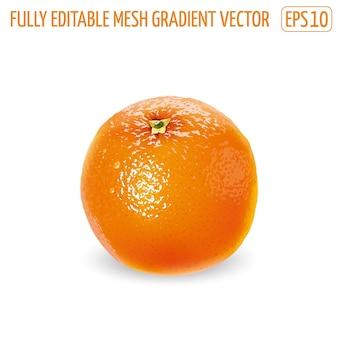 Orange fraîche non pelée sur fond blanc.