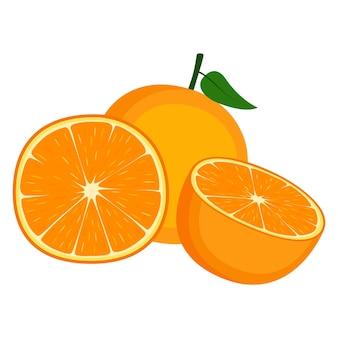 Orange, fruit entier et moitié, sur fond blanc, illustration vectorielle