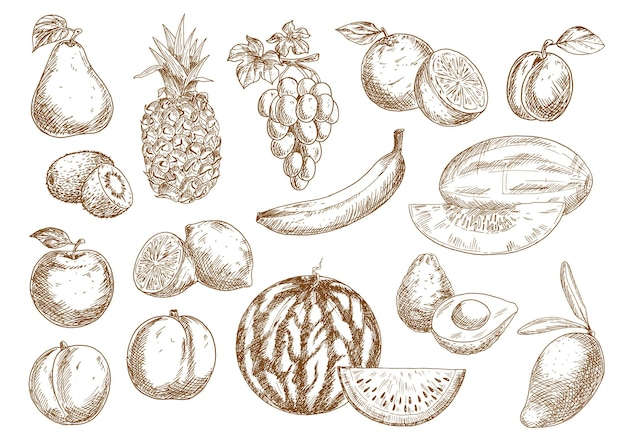 Oranges et bananes fraîchement récoltées à la ferme, pomme et mangue, ananas et pêche
