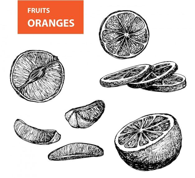 Oranges - ensemble de dessins vectoriels