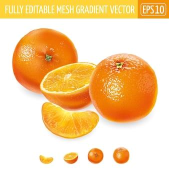 Oranges entières et tranchées sur fond blanc