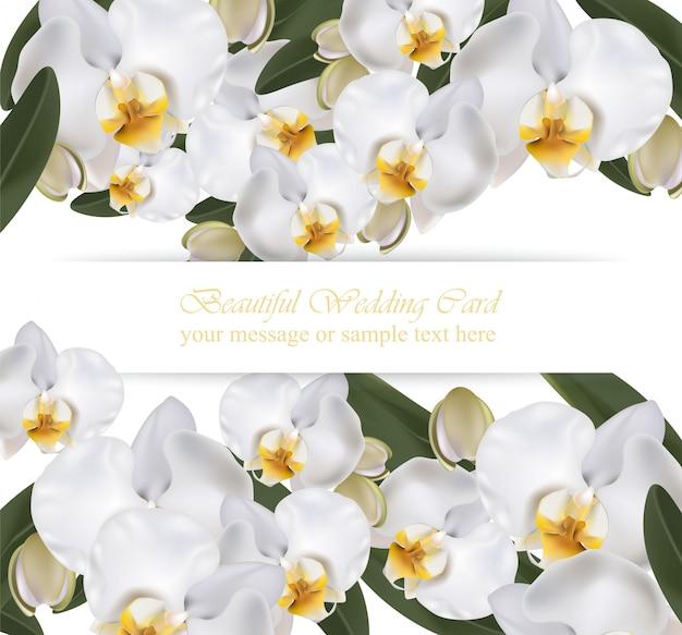 Orchid flowers card banner affiche fond réaliste vector illustration