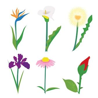 Oreilles de blé fleurs et vecteur d'herbe