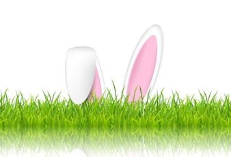 Oreilles de lapin de Pâques dans l'herbe