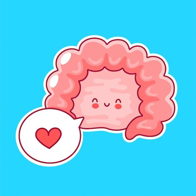 Organe d'intestin humain drôle heureux mignon avec bulle de dialogue
