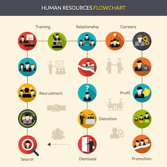 Organigramme des ressources humaines