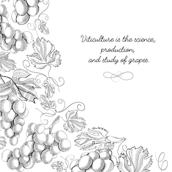 Ornement de défilement de vignette de cadre de coin doodle illustration de croquis dessinés à la main frontière feuilletée de raisin