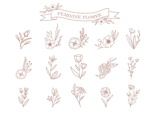 Ornement de fleurs et feuilles
