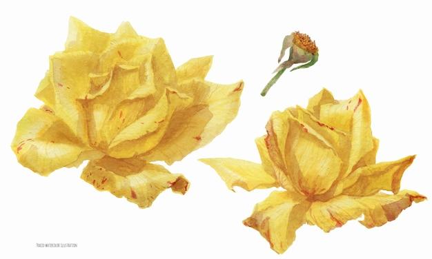 Ornement floral sur le thème de noël
