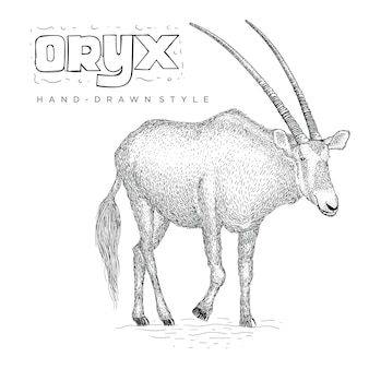 Oryx vhand illustration animale dessinée