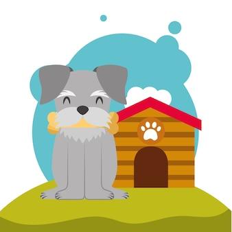 Os de chien chiot mignon dans la bouche et la maison de chien dans le pré