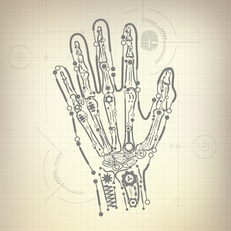Os de la main