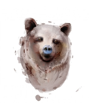 Ours aquarelle