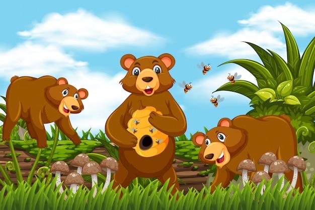 Ours au miel dans la scène de la jungle