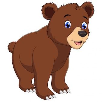 Un ours brun isolé sur fond blanc