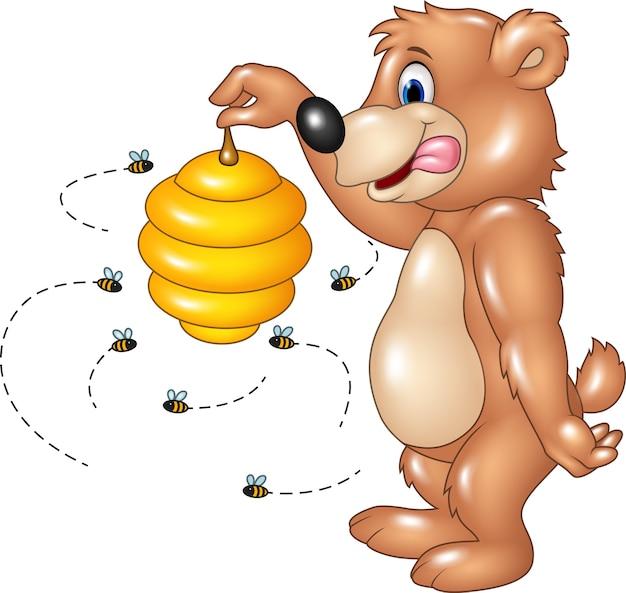 Ours drôle de dessin animé tenant la ruche d'abeille