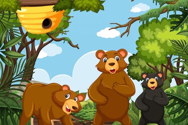 Ours mignon dans la scène de la jungle
