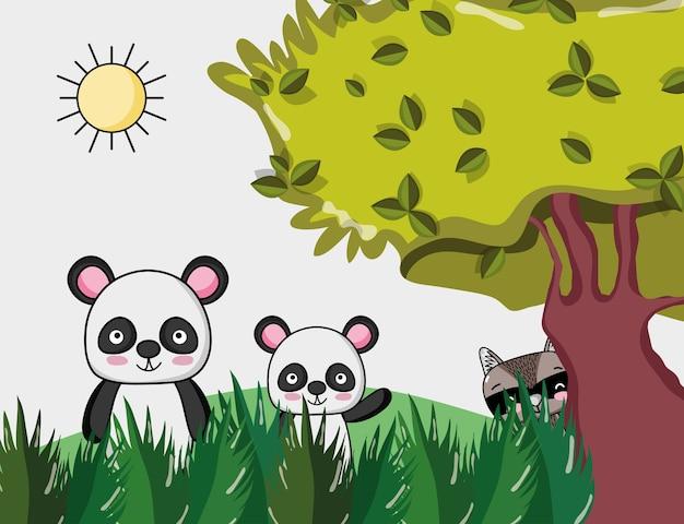 Ours panda mignon