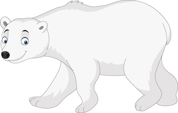 Ours polaire de dessin animé isolé sur fond blanc