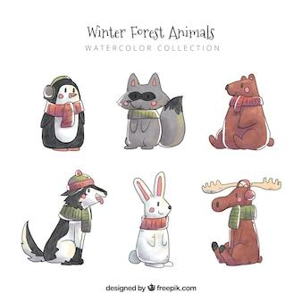 Pack animaux aquarelle